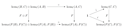 Enriched Functor Definition